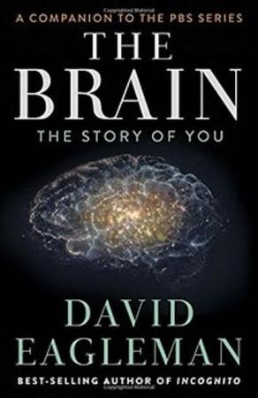 Мозг с Дэвидом Иглменом / The Brain with Dr. David Eagleman (2015)